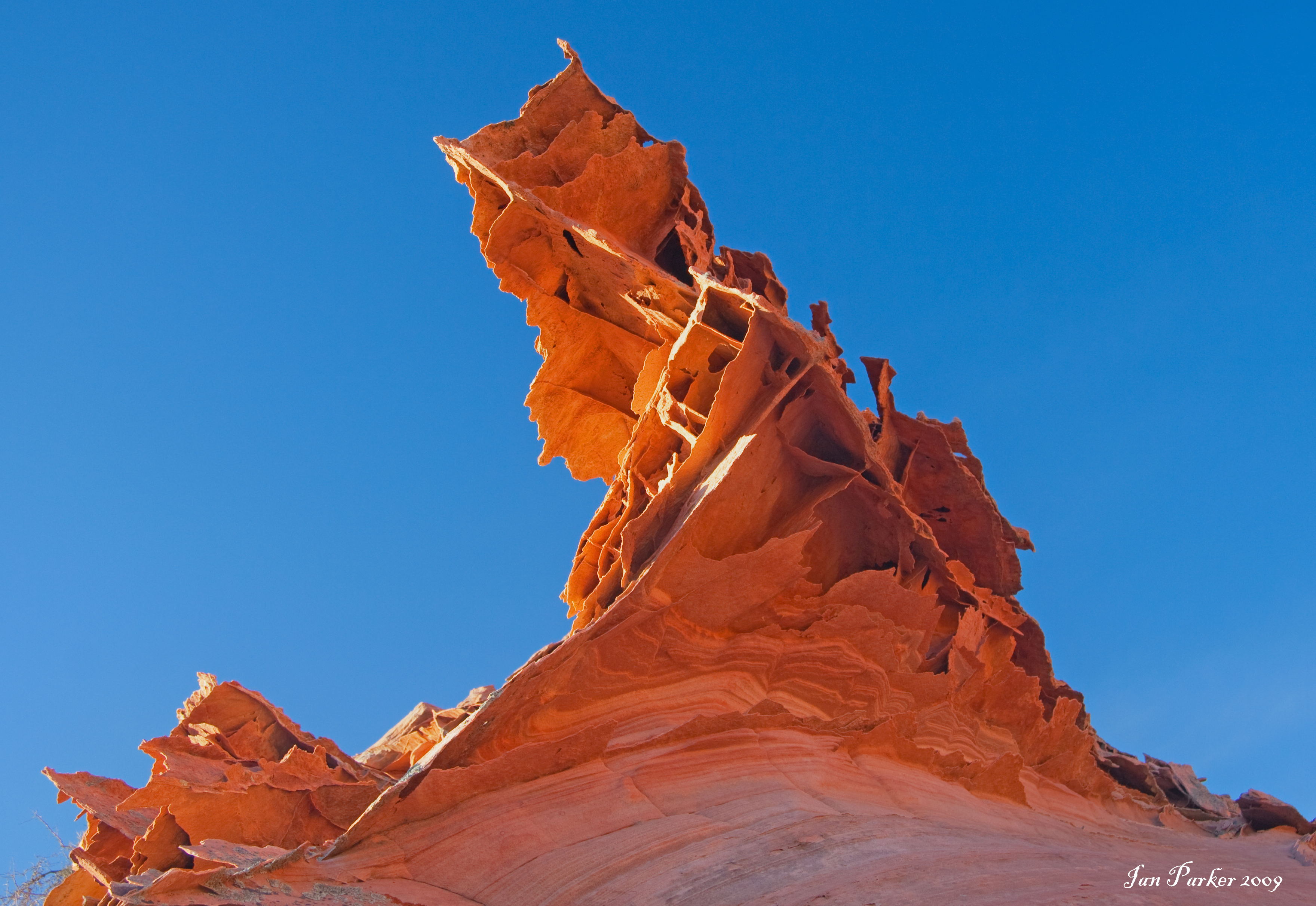 Evanescent Light : The Wave, Coyote Buttes